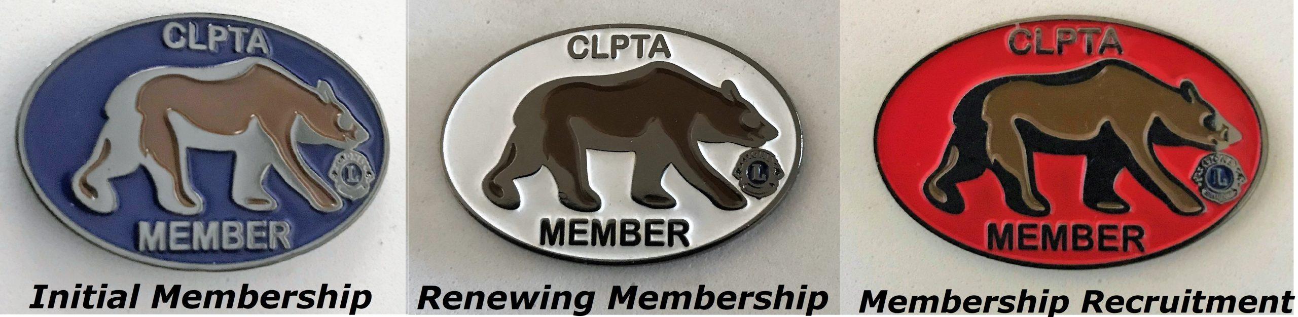 CLPTA MEMBERSHIP PINS